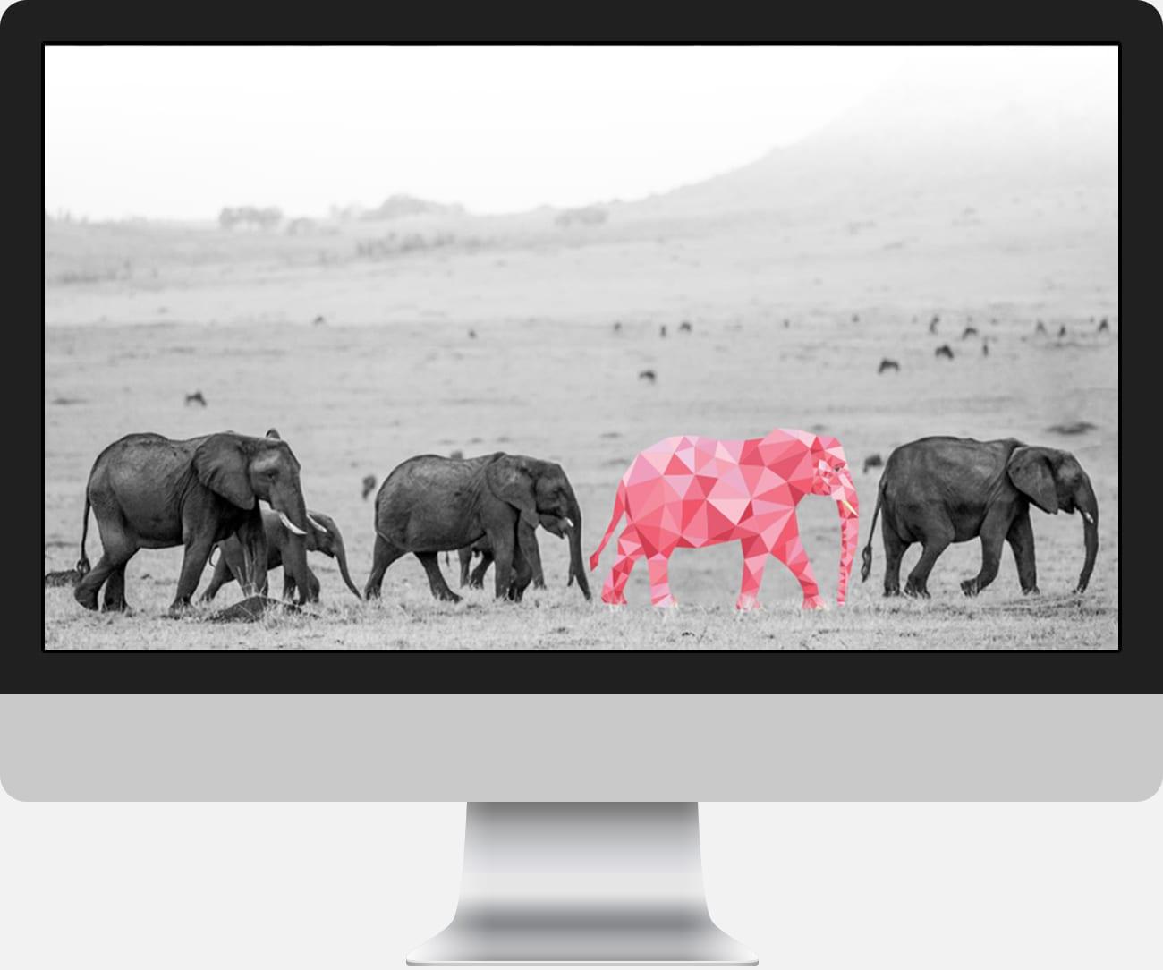 webdesign-heerlen